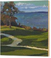 Sheridan Park No.5 Wood Print