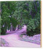 Sheridan Road Wood Print