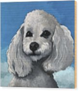 Sherman - Poodle Pet Portrait Wood Print