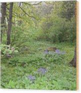 Shetland Woods Wood Print