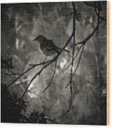 Shhhh A Bird Wood Print