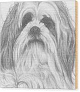 Shih-poo Wood Print