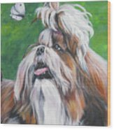 Shih Tzu And Butterfly Wood Print
