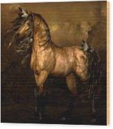 Shikoba Choctaw Horse Wood Print