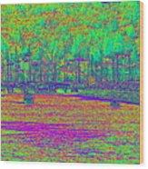 Shilshole Bay Marina Wood Print