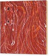 Shimmer Wood Print by Carol  Law Conklin