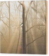 Shine On Through Wood Print