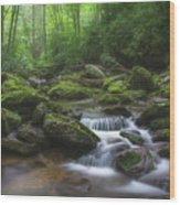 Shining Creek Wood Print
