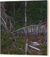 Ship Wrecked Wood Print