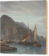 Shipping Off Gibraltar, 1880 Wood Print