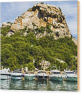 Ships Collection To Italian Harbor Wood Print
