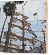 Ships Palm Wood Print