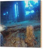 Shipwrecked Turtle Wood Print