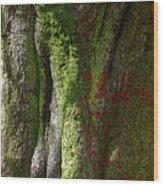 Shire Wood Print