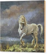 Shire Stallion Wood Print