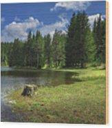 Shiroka Polyana Dam Wood Print