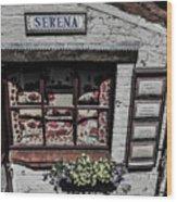 Shop Of Bruges Wood Print