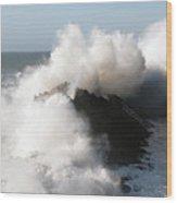 Shore Acres Wave 2 Wood Print