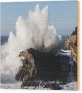 Shore Acres Waves 1 Wood Print