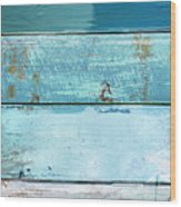 Shore And Moonrise Wood Print