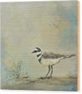 Shore Bird 2945 Wood Print