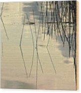 Shore Lines Wood Print