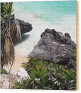 Shore Of Mexico Wood Print