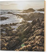 Shore Rays Wood Print