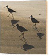 Shorebird Silhouettes Wood Print