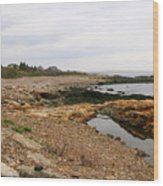Shoreline Gloucester Massachusetts Wood Print