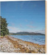 Shoreline On The Kyles Of Bute Wood Print
