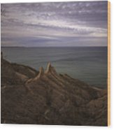Shoreline Sentries Wood Print