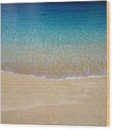 Shoreline To Horizon Wood Print