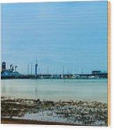 Shoreline View Wood Print