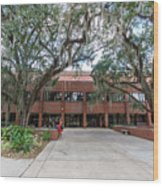 Shores Building At Florida State University Wood Print