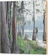 Shores Of Compass Lake Wood Print