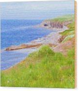 Shores Of Newfoundland Wood Print
