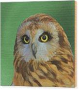 Short Eared Owl On Green Wood Print