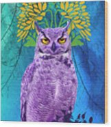 Owl At Night Wood Print