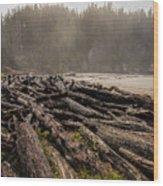 Short Sands Log Slash Wood Print