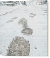 Show Footprints In Snow On Sidewalk Along The Park Wood Print