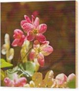 Shower Tree Blossoms Wood Print