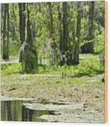 Shreks Swamp Wood Print