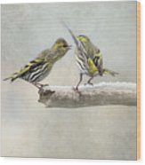 shrewish Girlitze Wood Print