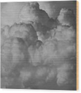 Shrimp Clouds Wood Print