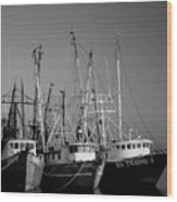 Shrimper Fleet Wood Print
