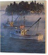 Shrouded In Morning Sea Smoke Wood Print