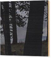 Shrouded  Soul Wood Print
