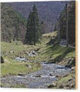 Shteaza river clear water near Rasinari Wood Print