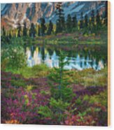 Shuksan Autumn Wood Print